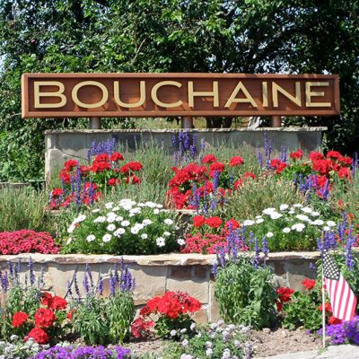 Bouchaine Vineyards in Carneros, Napa Valley